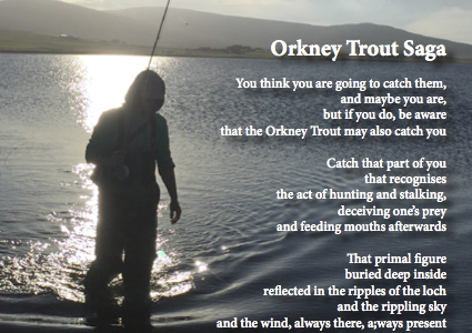Orkney Trout Saga
